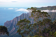 _5D39514 (dendrimermeister) Tags: kauai hawaii waimea canyon scenery landscape color napali coast