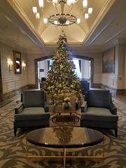 12-4-2019: Christmassy lobby. Boston, MA