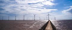 Straight path to the winds (Cadicxv8) Tags: wind path vanishing point landscape sea sky cloud vietnam road beach windmill turbine