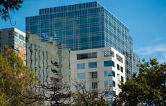 City buildings Melbourne (laurie.g.w) Tags: city buildings melbourne victoria urban reflections light blue sky trees d700 nikon