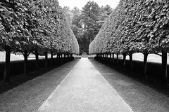 Gardens at The Mount (tmvissers) Tags: themount edith wharton estate garden path perspective lenox massachusetts berkshires
