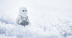 The Carbon Crystals (Avanaut) Tags: lego minifigure toy toyphotography toyphotographer hoth theempirestrikesback starwars snowtrooper stormtrooper snow winter originality avanaut