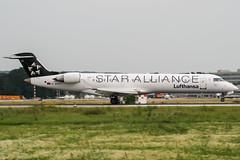 D-ACPT (PlanePixNase) Tags: eddl dus dusseldorf düsseldorf airport aircraft planespotting lohhausen canadair lufthansa regional crj 700 crj7