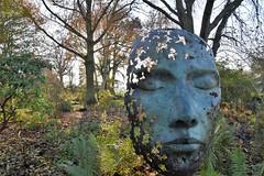 leaf spirit (boggled) Tags: kewgardens nikond5500 sculpture art bronze simongudgeon leafspirit
