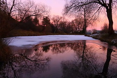 Through the ice shell (tatranka7) Tags: landscape mirrror reflections sunset light colors trees atmosphere ice pond water winter