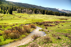 Mountain and Meadows Near Crested Butte Colorado - 1039 (Michael Kirsh) Tags: mount crested butte colorado mountain elk range gunnison national forest valleys rocky rockies schofield pass devilspunchbowl crystal blue skies clouds