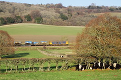 Surrey Hills, UK  |  2019 (keithwilde152) Tags: gbrf class739 73961 rhtt abinger hammer hackhurst down north downs uk 2019 landscape countryside railway animal stock railhead treatment train electrodiesels outdoor winter sun
