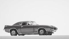Auto World 1969 Pontiac Firebird Trans Am (nirmala_l91) Tags: diecast modelcar 164 autoworld pontiac pontiactransam