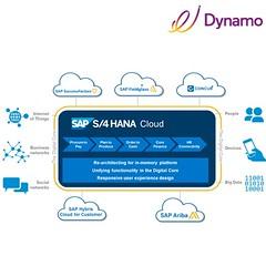 54511431_854069188275886_488729587628059417_n (dynamoinfotech) Tags: s4hanacloud cloud business dynamo