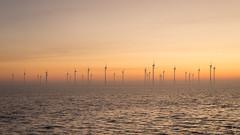 "Wind farm ""Krammer"" (Jongejan) Tags: windfarm wind windturbine powerplant light sun sea grevelingen krammer bruinisse zeeland netherlands fog sunrise"