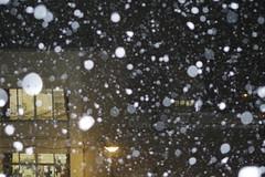Snow balls (しまむー) Tags: pentax k30 smc da 1850mm f456 dc wr re snow storm