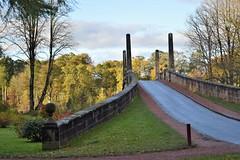 diablo (Harry McGregor) Tags: bridge dumfrieshouse ayrshire scotland 2019 october 30 nikon d3300 harrymcgregor diablo diablobridge trees