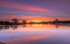 Icy Mogshade Dawn (nicklucas2) Tags: cloud cold pond water dawn landscape newforest hampshire mogshade tree