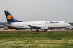 D-ABES (PlanePixNase) Tags: eddl dus dusseldorf düsseldorf airport aircraft planespotting lohhausen lufthansa boeing 737 737300 b733 733