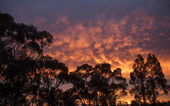 Whispers (Keith Midson) Tags: sunset sky cloud clouds tasmania kingston canon 5dsr