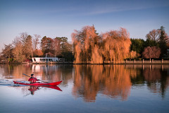 Kayaking! (powellspin) Tags: rower riverthames thamesvalley autumncolour marlow buckinghamshire uk boat reflections