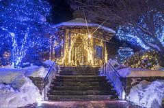 MCE_5535starentrance1jsm (JayEssEmm) Tags: winter holiday lights christmas tower hill botanic garden boylston massachusetts ma