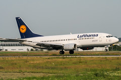 D-ABXZ (PlanePixNase) Tags: eddl dus dusseldorf düsseldorf airport aircraft planespotting lohhausen lufthansa boeing 737 737300 b733 733