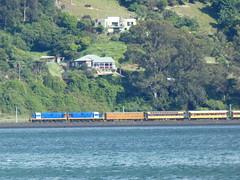 Cruiseship charter train (geoffreyw@kinect.co.nz) Tags: cruiseship charter train burkes otago harbour dunedin railways
