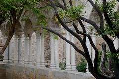 Cloître arabo-normand, St Jean des Ermites (1136), via Benedettini, Palerme, Sicile, Italie. (byb64) Tags: sicily palermo sicilia sicile palerme sizilien palermu italien italy europa europe italia eu italie ue xiie италия sangiovannideglieremiti сицилия палермо church iglesia kirche unescoworldheritagesite unesco chiesa 12th église normands cloître rogerii stylenormand arabonormand cloister chiostro claustro kreuzgang клуатр