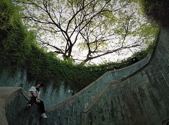 the stairwell (SM Tham) Tags: asia southeastasia singapore fortcanningpark park stairwell spiral walls curves slate tree creepers plants overhanging people circular