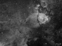 The Fish Head Nebula (Ralph Smyth) Tags: ngc ngc896 nebula fish cassiopeia ic1795 zwo zwo1600mm