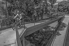 Up hill (Wal Wsg) Tags: uphill cuestaarriba planetbike planetabici bicicleta bike bici bicicletas bicicletta bicis biciclettas argentina buenosaires caba capitalfederal ciudaddebuenosaires belgrano dia day byn bw blancoynegro blackandwhite monocromatico monocromatic canon canont6i canonesorebelt6i phwalwsg photography photo fotografia foto