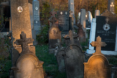 Old graveyard with different kinds of gravestones (Ivan Radic) Tags: christianity serbian afterlife beautiful cemetery differentkinds finalrestingplace flowers grave gravestone gravestones graveyard growing old person plant sundown tombestone tombstone canoneosm50 sigma2470mmf28dgoshsmart
