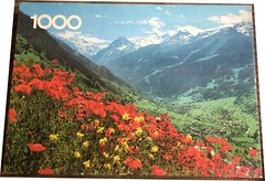 "FALCON F 1 1000 'CROWN' 28.25X20 CM PO 4305 (Red mountain flowers) (Andrew Reynolds transport view) Tags: jigsaw ""jigsaw puzzle"" picture pieces large difficult falcon hobby leisure pasttime f 1 1000 crown 2825x20 cm po 4305 red mountain flowers"