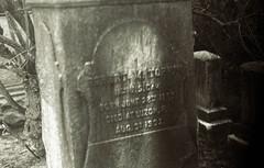 @Rosedale (Nesster) Tags: rosedale cemetery montclair nj trix