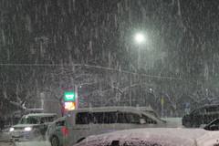 Hesitation (しまむー) Tags: pentax k30 smc da 1850mm f456 dc wr re snow storm