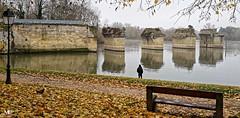 Poissy le pont ancien XIII 20191205_DxO (mich53 - thank you for your comments and 6M view) Tags: autumn automne 4autumn saisons poissy îledefrance pont bridge banc bench seine riverside paysage samsunggalaxynote8