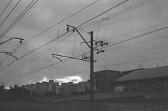 (Koля) Tags: kentmere400 rodinal150 eos3000 35mm film