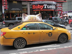 2019 CATS Movie Musical Ad on top of Taxi Cab 1324 (Brechtbug) Tags: 2019 cats scalp riding top taxi bab movie musical broadway billboard kinda look like mutants new york city 12052019 nyc action andrew lloyd webber 80s winter garden theater show portrait poster standee theaters 7th ave 41st street above times square