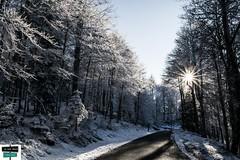 vallée de Barétous (https://pays-basque-et-bearn.pagexl.com/) Tags: 64 altitude aquitaine arette colinebuch france nouvelleaquitaine pyrénéesatlantiques hautbéarn lapierresaintmartin montagne nature pyrénées sudouest valléedubarétous lanneenbarétous