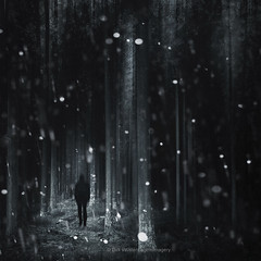 darkness : light (Dyrk.Wyst) Tags: surreal dark abstract monochrome blackandwhite conceptual trees ghost alone moody dreamy lights rain forest textures