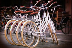 Rower miejski - jaki wybrać i kupić? Najlepsze rowery miejskie w rankingu 2019! (KatarzynaZ) Tags: 2016 2017 2018 2019 dobryrowermiejski jakirowermiejski rankingrowerówmiejskich2015 rowerdomiasta