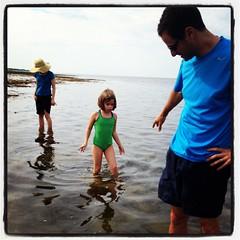 IMG_2899 (shira_kronzon) Tags: 2012 capecod vacation beach