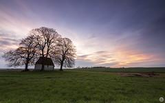 Colors of Autumn [FR] (ta92310) Tags: sunset travel picardie oise 60 europe jouysousthelle chapelle chaireàloup chapel canon landscape countryside hautsfrance paysage longexposure autumn automne 2019