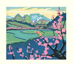 Plum (Japanese Flower and Bird Art) Tags: flower plum prunus mume rosaceae masaya watabe modern woodblock print japan japanese art readercollection