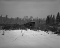 Forgotten Snows (http://www.aimonephoto.com) Tags: 4x5 blackwhite kodaktrix320 largeformat newhampshire pyrocatmc travelwide904x5filmcamera film monochrome safe