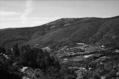 Of life in Estrela Highland (lebre.jaime) Tags: portugal bw landscape blackwhite noiretblanc pb nb epson beira pretobranco analogic leicam3 ptbw film135 estrelamountainrange summicron2050dr estrelahighland v600 affinity affinityphoto
