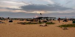Negombo,   Sri Lanka (Meino NL) Tags: negombo beach srilanka sea laccadivesea