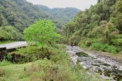 Verde que te quiero verde (pepelara56) Tags: verde selva río tucumán argentina paisaje green jungle monte