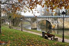 Poissy - DXOFP GN8 20191205jpg (mich53 - thank you for your comments and 6M view) Tags: autumn automne 4autumn saisons poissy îledefrance pont bridge banc bench seine riverside paysage samsunggalaxynote8