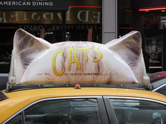 2019 CATS Movie Musical Ad on top of Taxi Cab 1328 (Brechtbug) Tags: 2019 cats scalp riding top taxi cab movie musical broadway billboard kinda look like mutants new york city 12052019 nyc action andrew lloyd webber 80s winter garden theater show portrait poster standee theaters 7th ave 41st street above times square