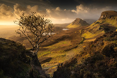 Famous (JD Photographie.) Tags: quiraing thequiraing isleofskye isle skye skyeisland uk scotland landscape light morning tree famous nature middleearth lordoftherings