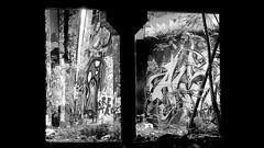 Oldenburg - (street: Melkbrink) 986th picture / Graffiti, street art (tusuwe.groeber) Tags: projekt project lovelycity graffiti germany deutschland lowersaxony oldenburg city streetart niedersachsen farbig farben favorit colourful colour sony sonyphotographing nex7 bunt red rot art gebäude building gelb grün green yellow konzept concept wall wand halloffame wandgestaltung lager lagerhalle hall halle melkbrink schwarz weis black white blanco negro bw sw