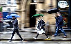 Blue, Green And Black (Fermat 48) Tags: mountstreet blue green black rain walking thebrotherhood café manchester townhall wet canon eos 7dmarkii ef24105mmf4lisusm