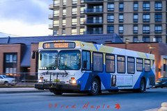 IMG_1548 (1fredmaple) Tags: halifaxtransit hfxtransit transitvehicle transit bus transitbus buspicture busphoto busphotography newflyerd40lf newflyer hfxtransitroute64 hfxtransit1109